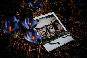 Polaroid Bundle