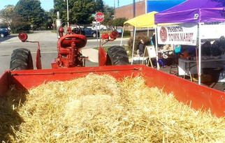 Hayride by Frankton Heritage Days