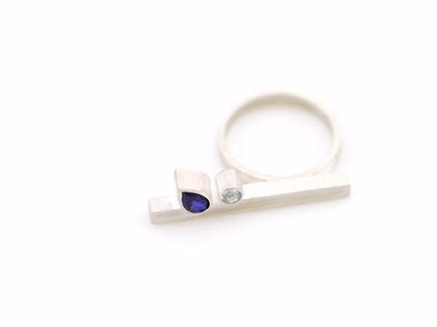 Geometrische ring