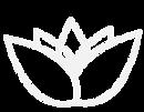 MINDFUL MEDICINE WEB PAGE MOCKUP-02.png