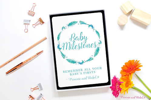 Baby Milestone Cards Gift Set - Watercolour Feathers