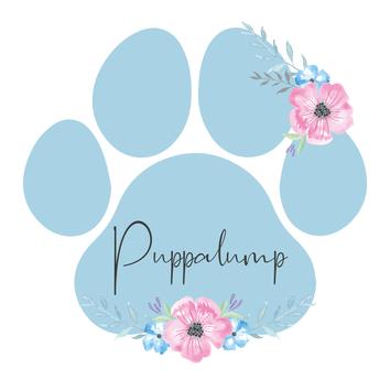 PUPPALUMP PNG FLAT-06.png