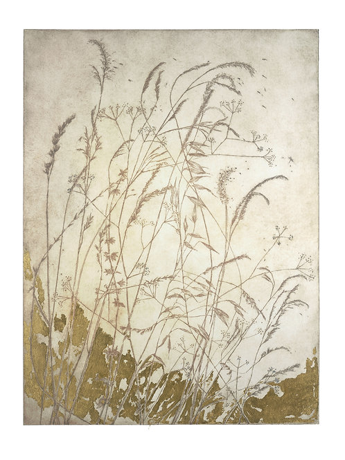birling breeze - original etching