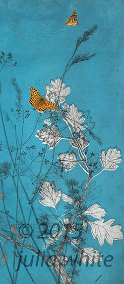 Birling editions 2.jpg - butterfly breeze