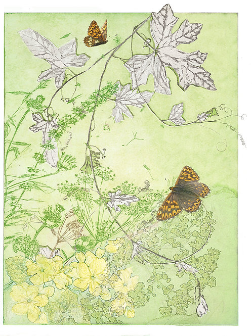 the duke of burgundy with silver leaf