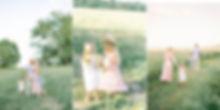 BV Website Banner Fink 2.jpg