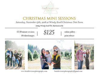 Now Booking: Christmas Minis 2018!