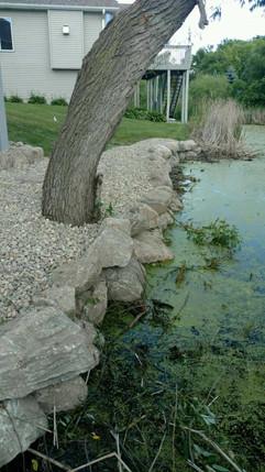 landscaping6.jpg