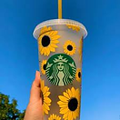 Daisy Cup.png