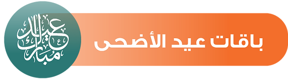 shalehi-website-new-icons-2019-٢٣٢.png