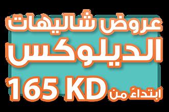 shalehi-2322.png