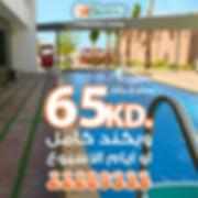 shalehi--65-offer-٢ش.jpg
