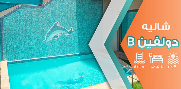 Dolphin-B.jpg