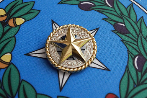 Silver and Gold Texas Star With Rope SKU C13