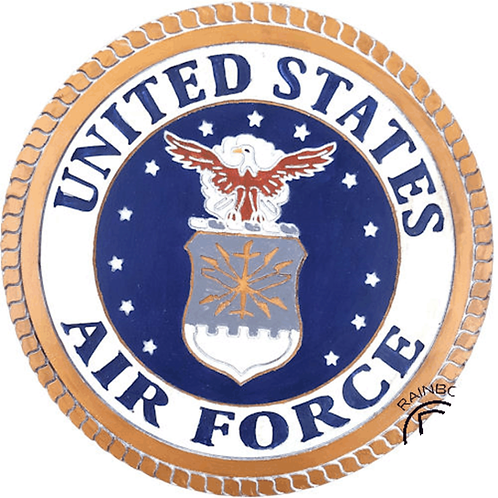 "LARGE 20"" AIR FORCE PLAQUE"