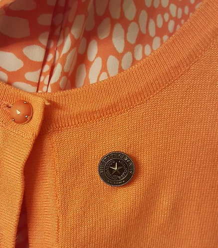 State of Texas Pin with Magnet
