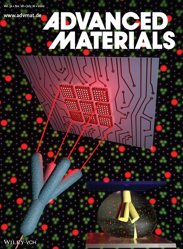 Advanced Materials inside cover.jpg