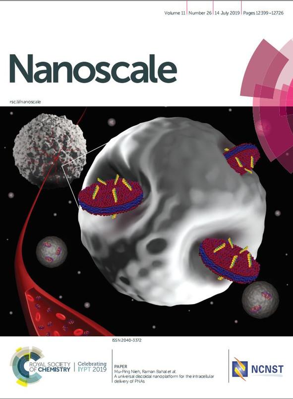 Nanoscale cover art