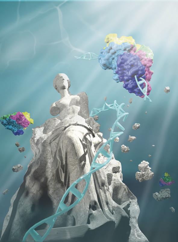 CRISPR protein cover art