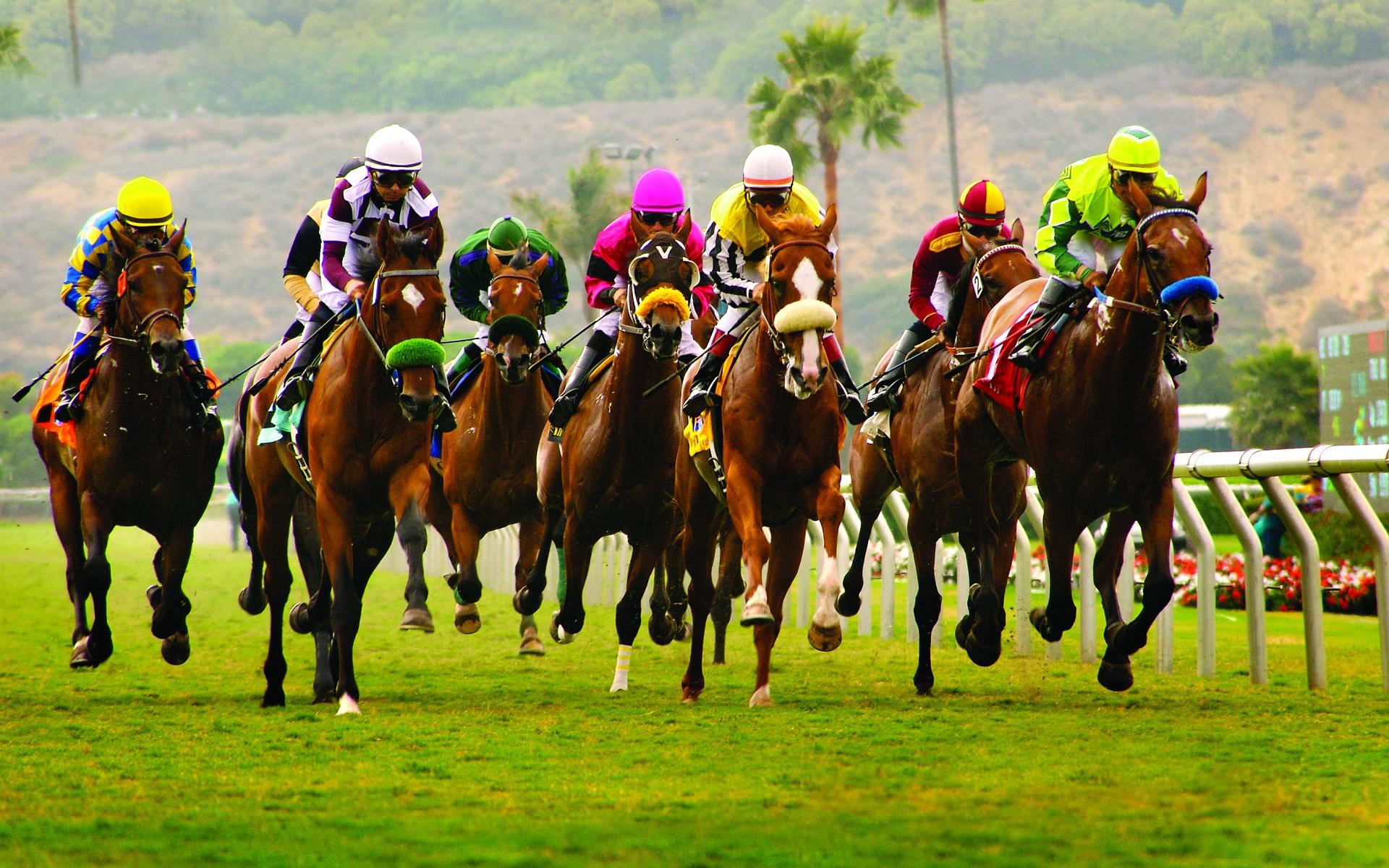 PIC-Del Mar race_22
