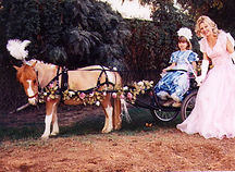 Mini horse and cart rides for kids.