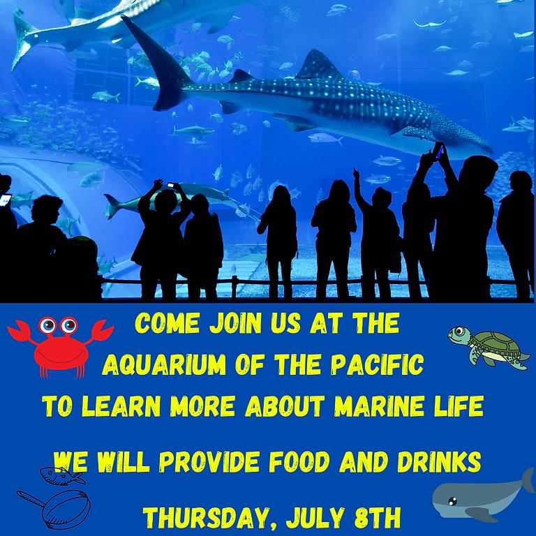 Summer of Engagement: Aquarium of the Pacific