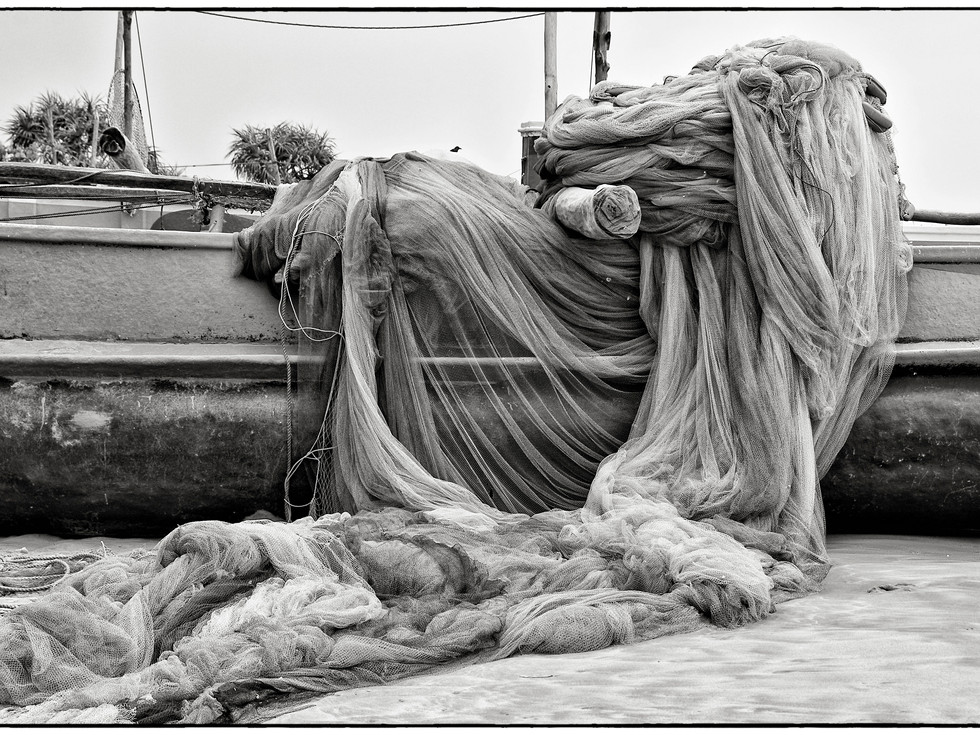 Dorrie Mcveigh Photographe Marseille