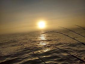 sun and poles.jpg