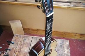 Spruce with Amazon Rosewood ES