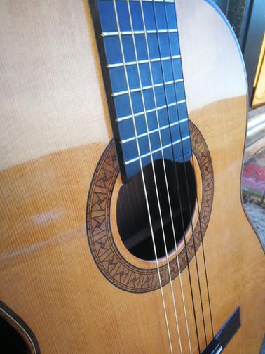 Rose & Strings
