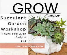 succulent workshop insta.png