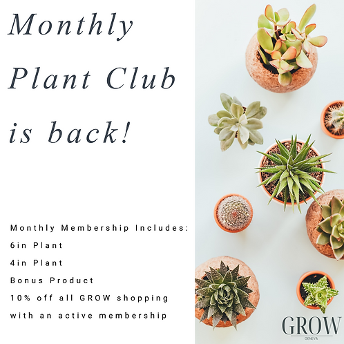 Monthly Plant Club