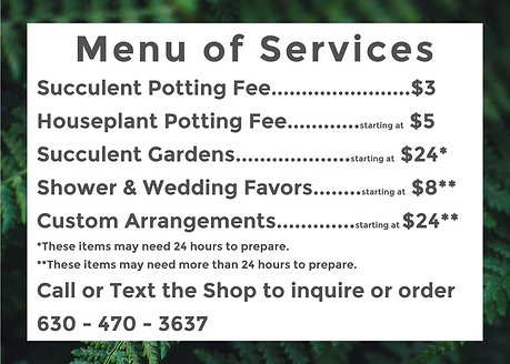 Menu of Services.png