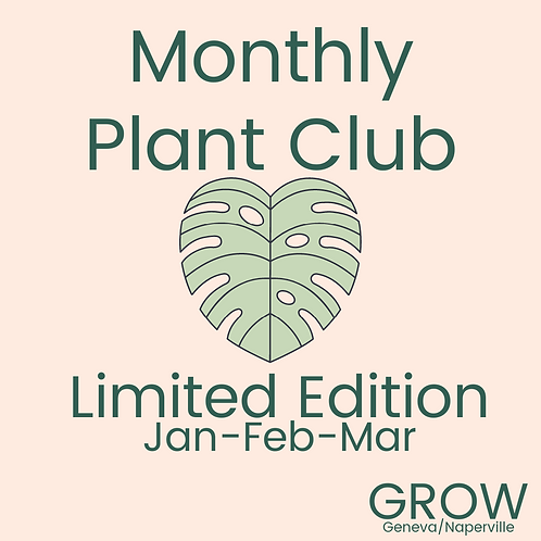 Limited Edition Monthly Plant Club