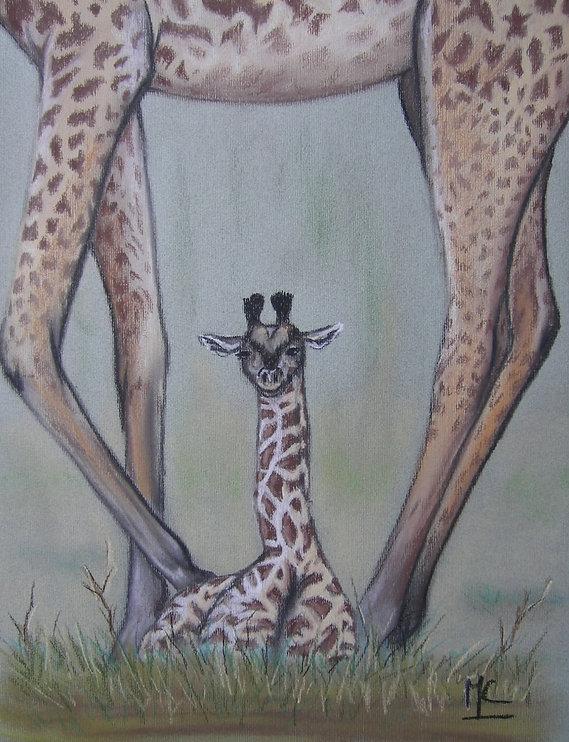 girafon.jpg