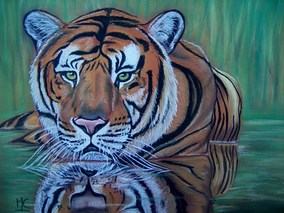 tigre dans lo2.jpg
