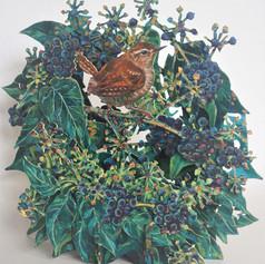 Wren in ivy