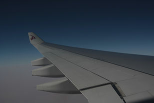 Airplane%20Wing%20_edited.jpg