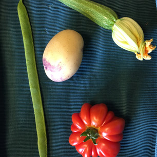 Class 19 - collection of 4 vegetables (Mr Lyn Cornelius)