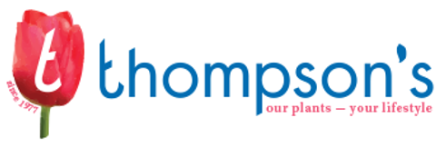 thompsons.png