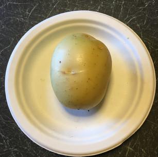 Class 18 - best shaped potato (Mr Lyn Cornelius)