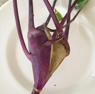 Class 44 - ugliest vegetable (Mrs M Brown)