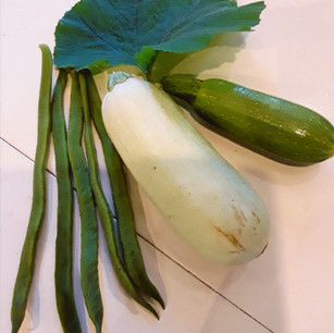 Class 19 Collection of Vegetables (Mrs M Talbot)