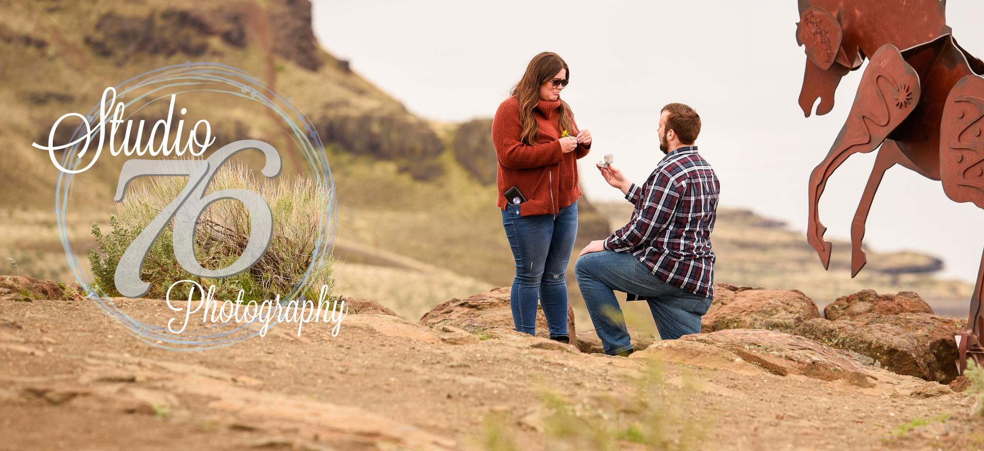 Wild Horse Proposal