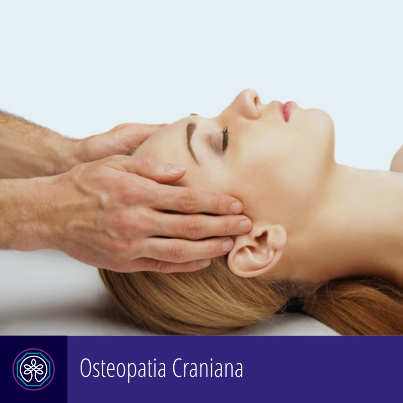 Instituto Pro Therapie   Osteopatia Craniana