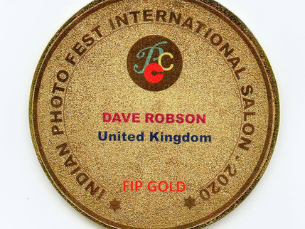 Gold Medal for Dave