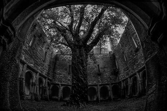 3ffg cloisters KB.jpg