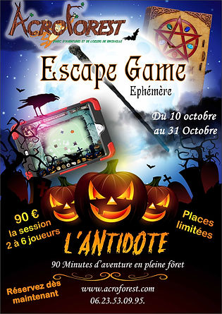 flyer l'antidote web.jpg