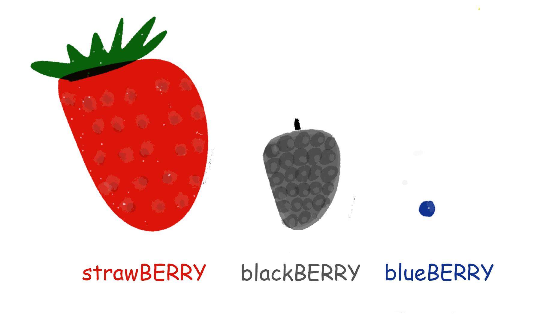 Berries from Large to Small