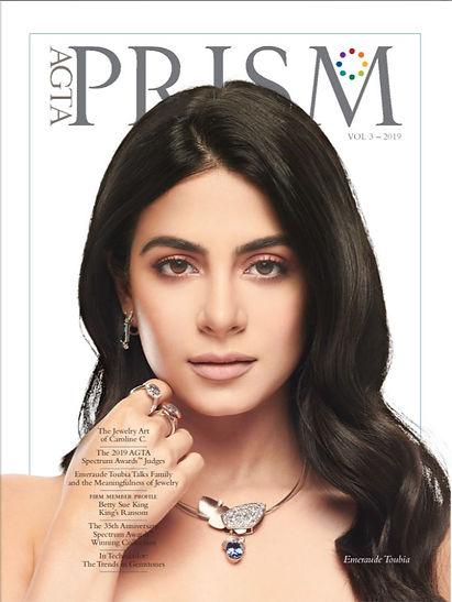 Prism cover 193.JPG